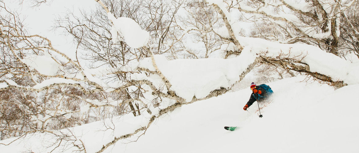skier ripping backcountry powder in Japan