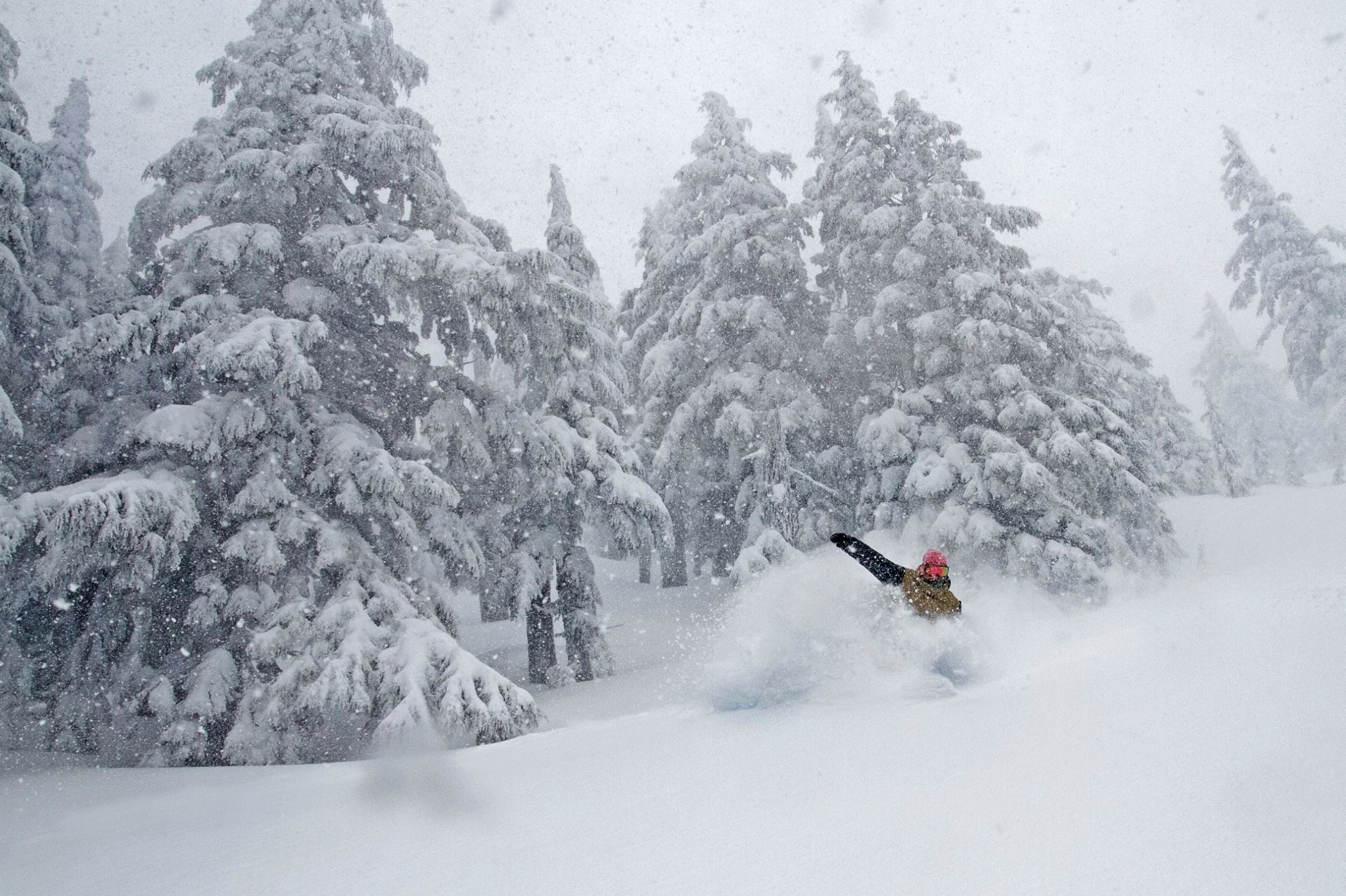 Mt. Bachelor, OR on March 15th. photo: tapper