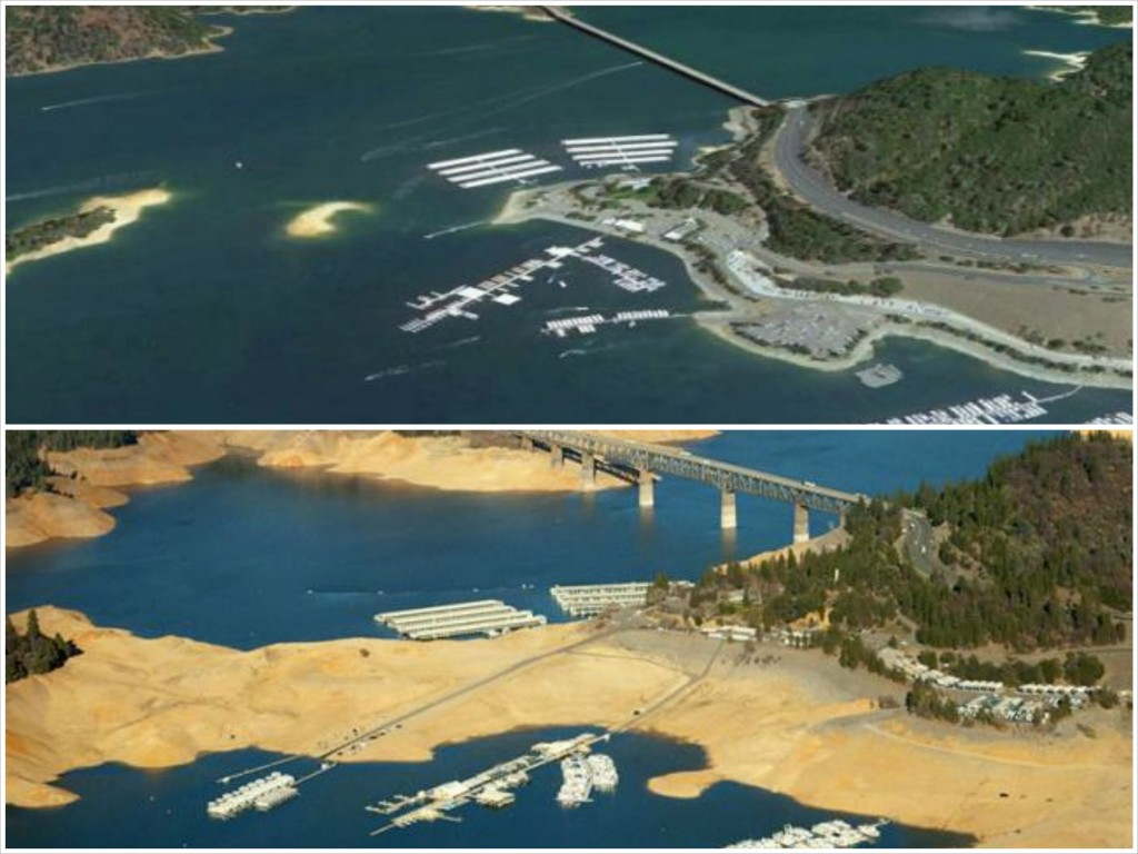 Thought differently, lake shasta water level was