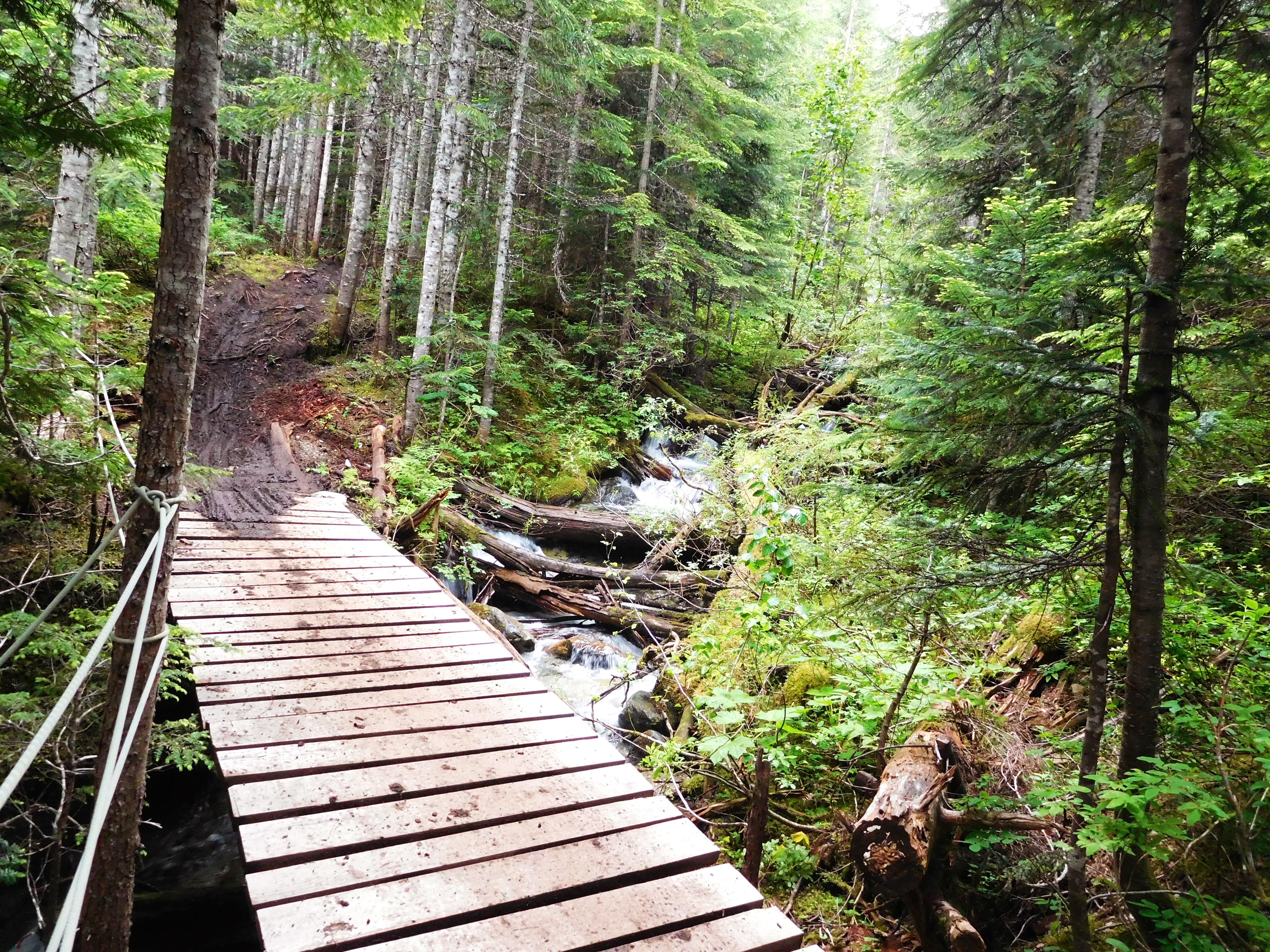 creekside whistler trails