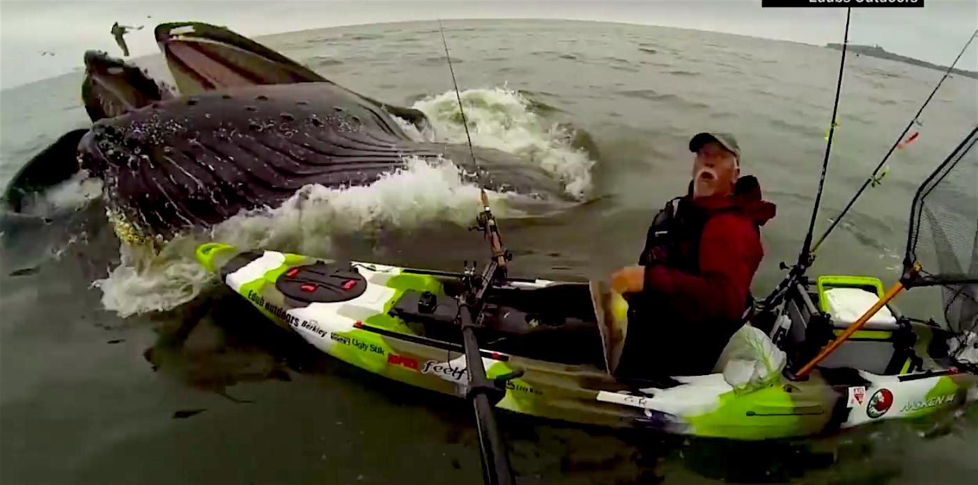 Video kayaker in half moon bay ca nearly swallowed by for Deep sea fishing half moon bay