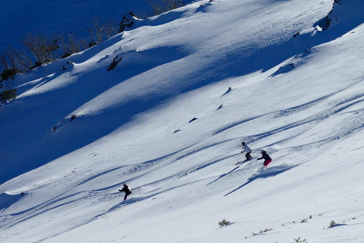 Group fun in Falls Creek backcountry. August 2016. photo: skiing with steve lee