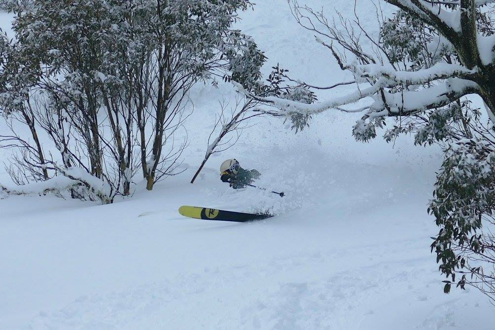 Big pow. photo: skiing with steve lee
