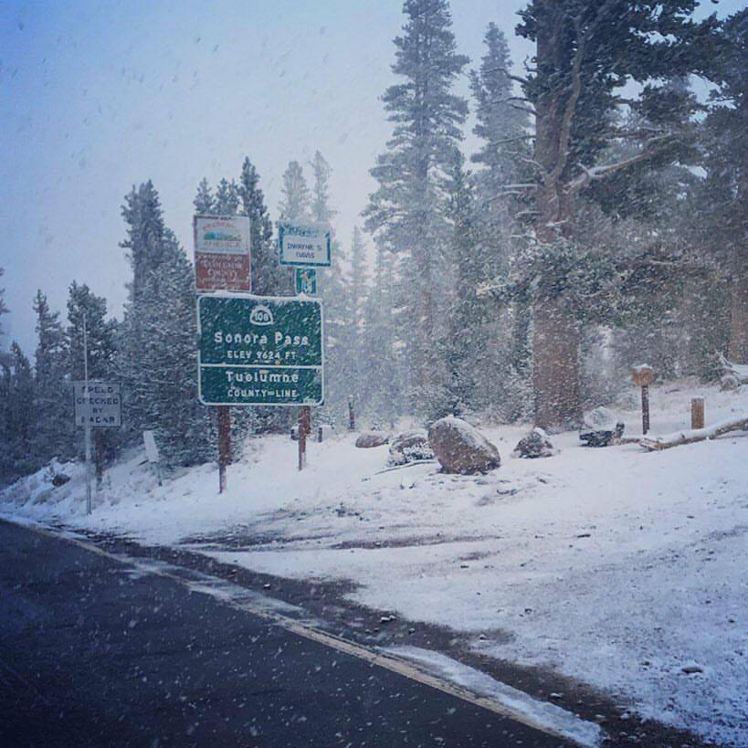 Sonora Pass, CA today. photo: allison jones