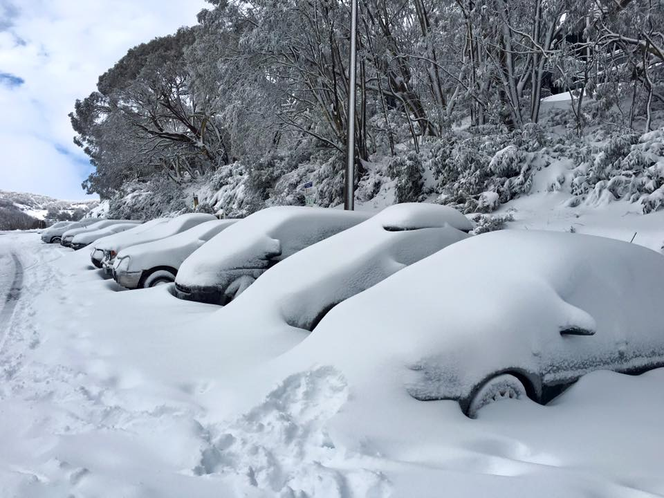 fcreek_snowfall1