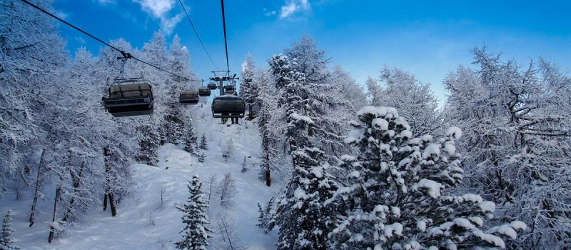 Tignes, France - tree skiing Credit: igluski.com