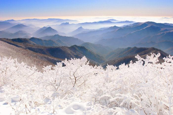Credit: Visit Korea
