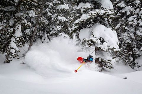 Wish I had gotten some shots like this but no one wanted to ski with me!