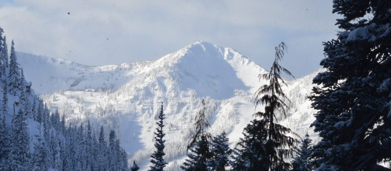 Backcountry Splitboarding crystal Mountain