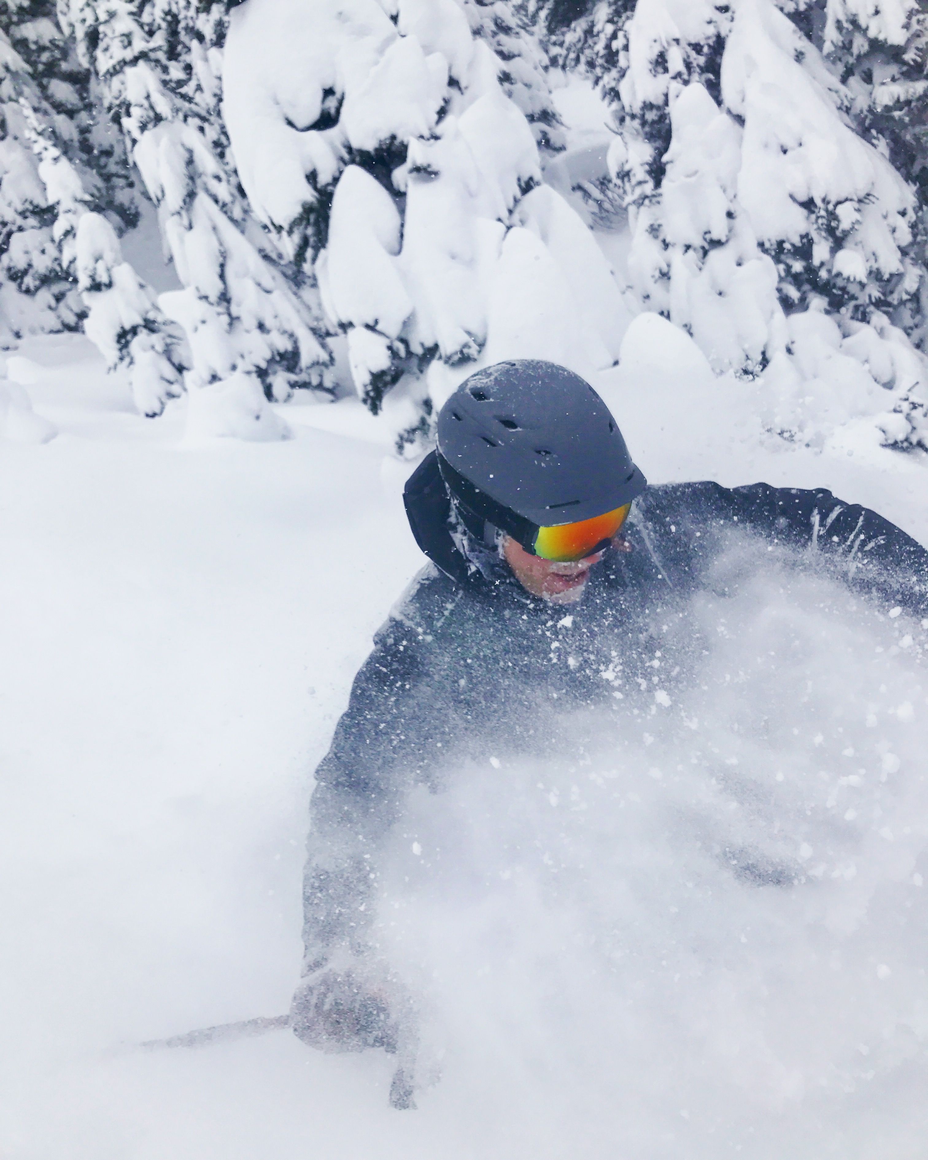 powder skiing blower, climate change, climate, snow decline