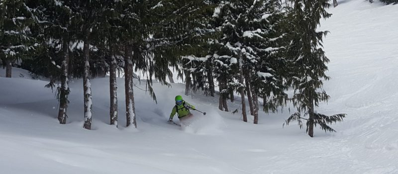 powder skiing crystal mountain