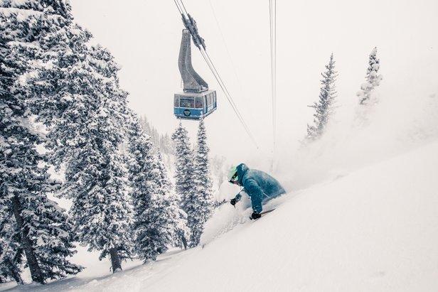 Snowbird athlete Ben Wheeler skis under the tram at Snowbird. Image: ©Liam Doran