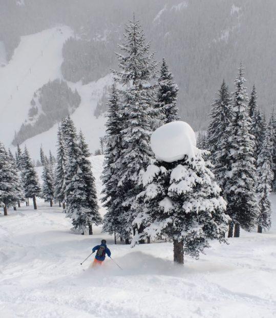 whitedot skis, Reid Pitman, Norrona