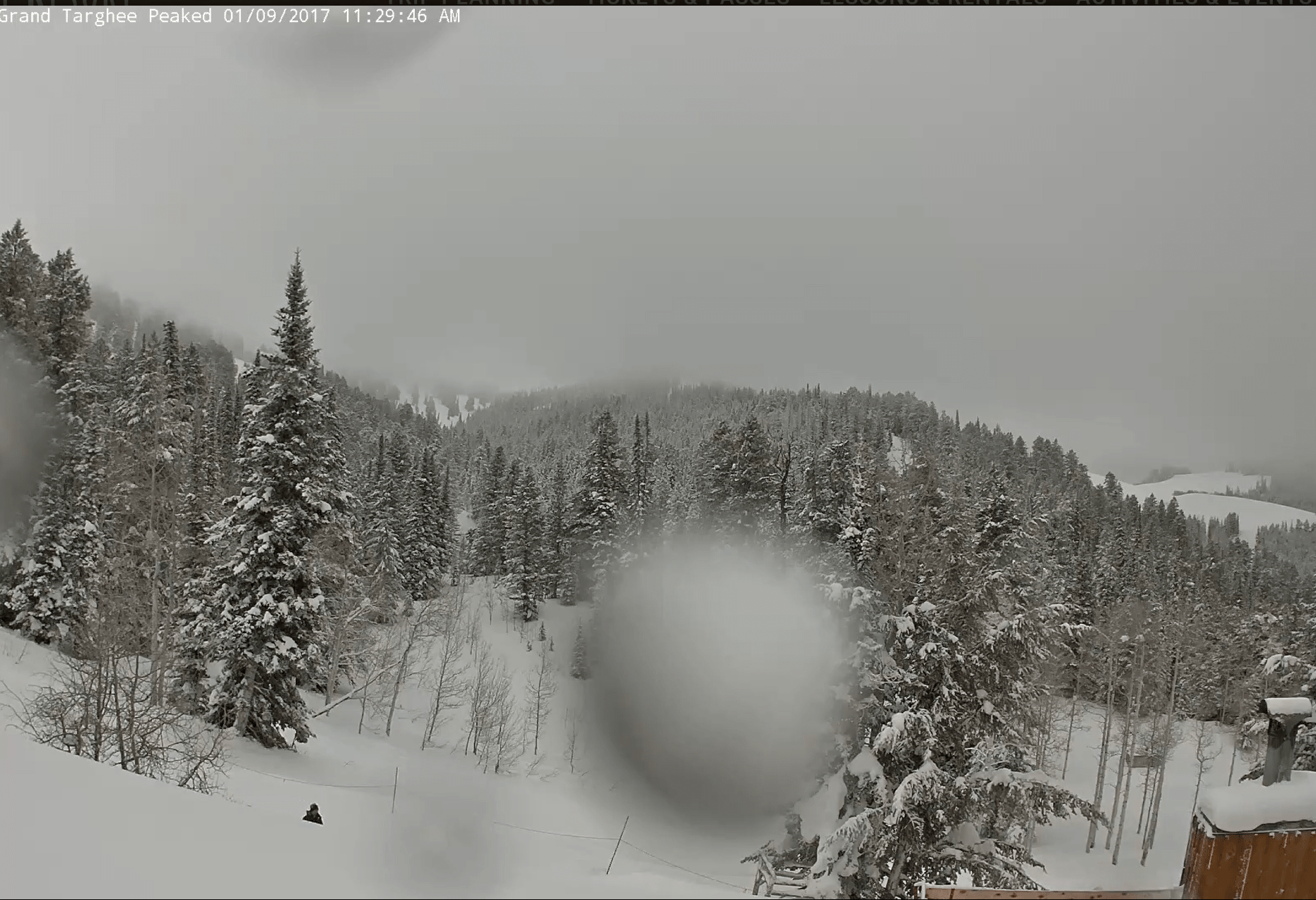 Grand Targhee Right Now. Image: Targhee Webcam