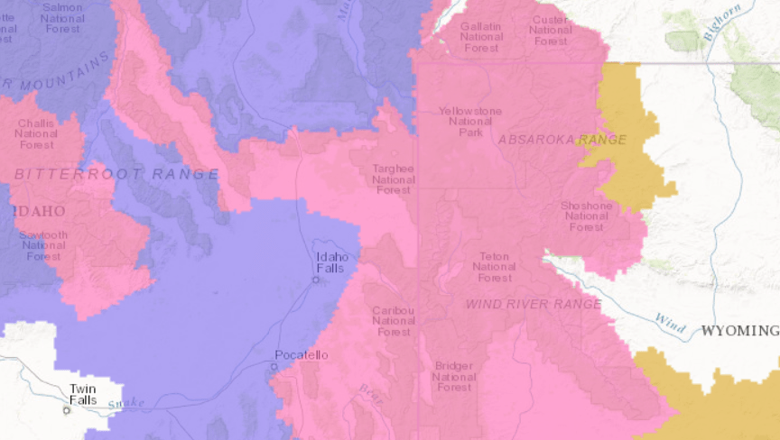 PINK= Winter Storm Warning. PURPLE= Winter Weather Advisory. Image: NOAA Today