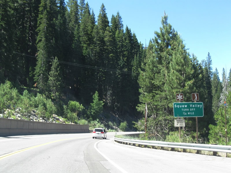 Tahoe City Women Killed After Tree Falls On Her Car While