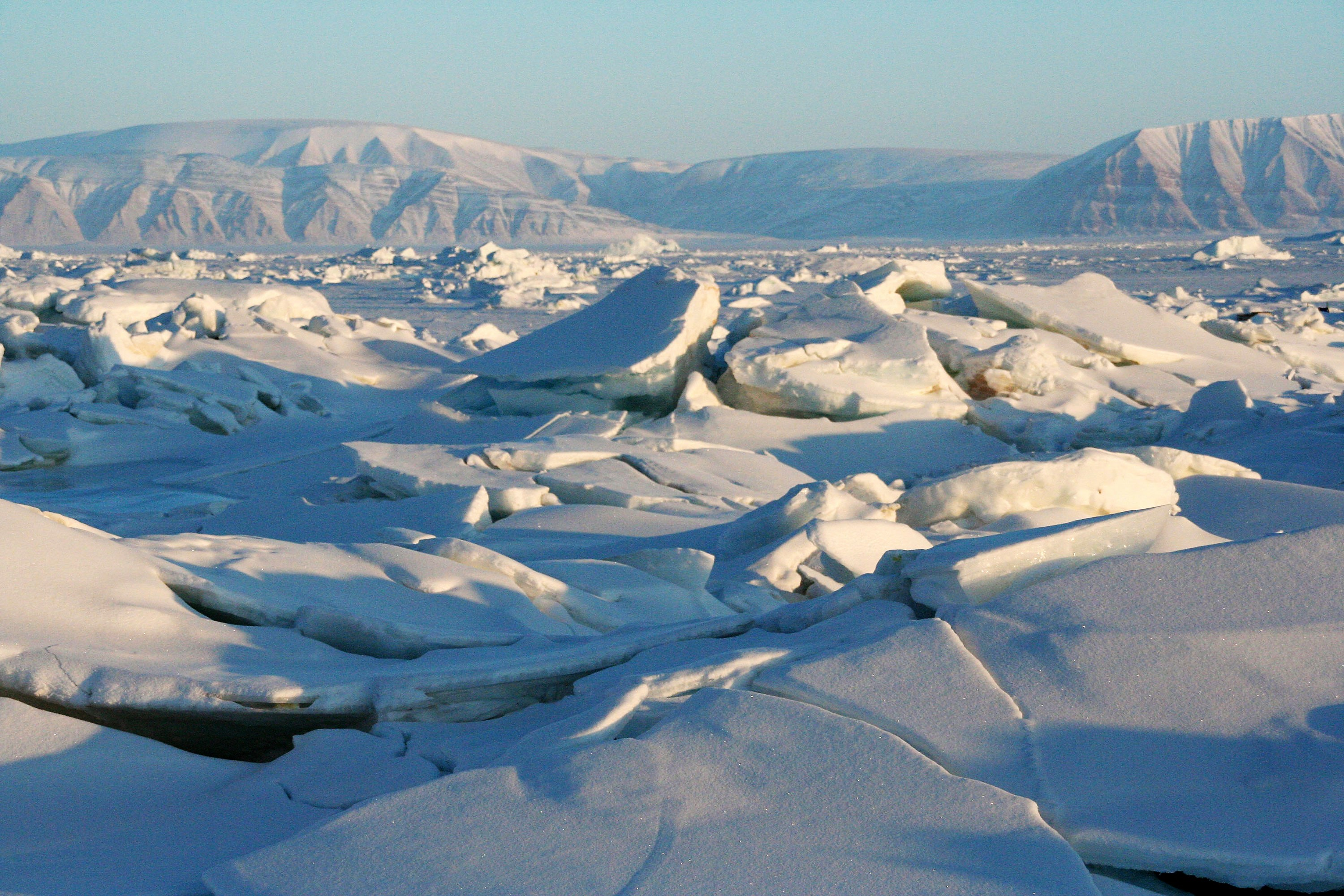 Strong winds caused sea ice to crack and buckle off the coast of Greenland. Credit: Andy Mahoney, NSIDC