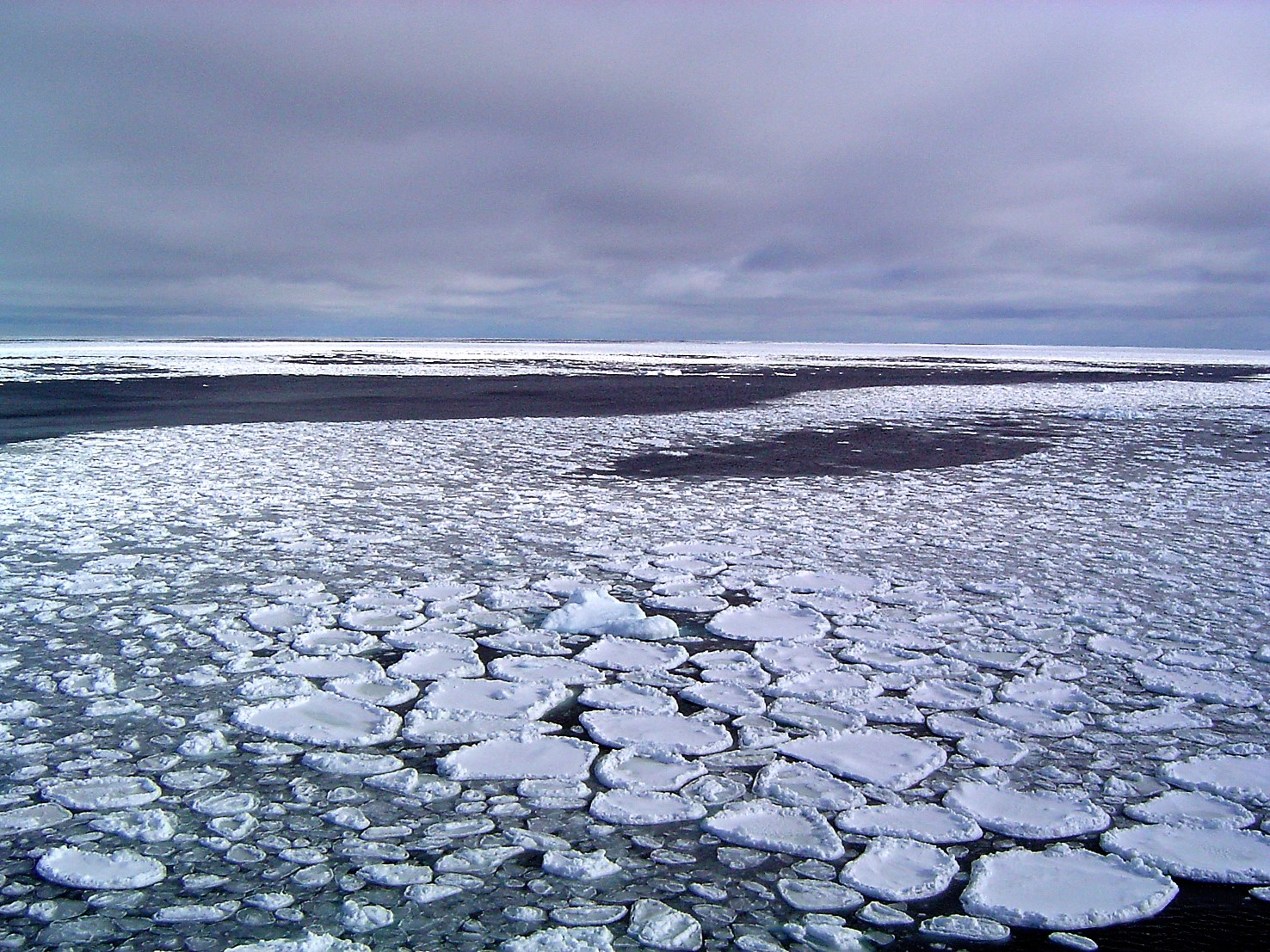 """Sea ice can take on a variety of textures. When waves buffet the freezing ocean surface, characteristic """"pancake"""" sea ice forms. This sea ice was photographed near Antarctica. Credit: Ted Scambos, NSIDC"""