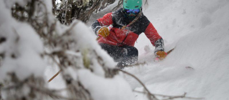 Crystal mountain, trees, skiing, powder, tree skiing