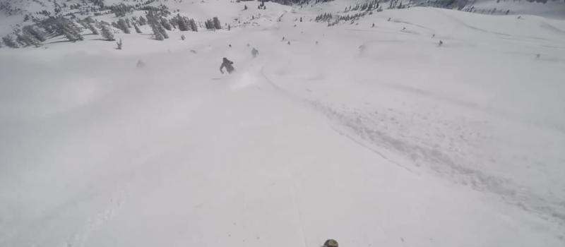 snowbird, rope drop, powder, crazy, frenzy, utah
