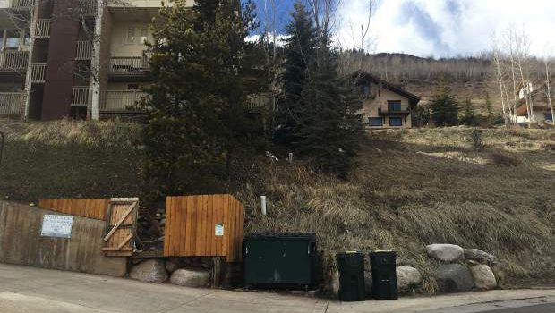 woman, tied up, vail, dumpster, alive