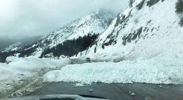 avalanche, kootenay pass,