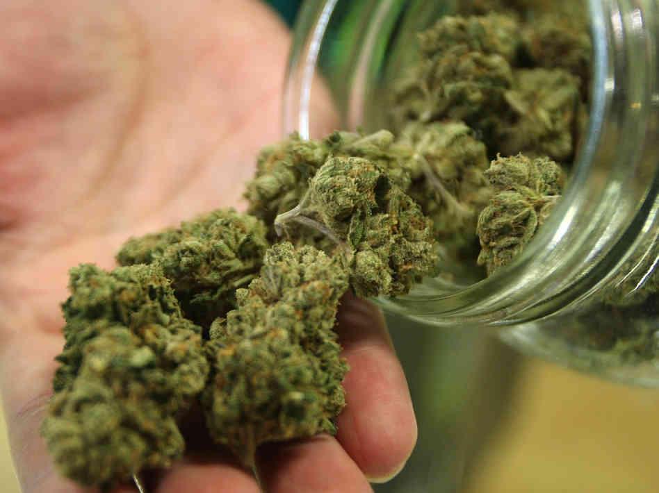 marijuana, cannabis