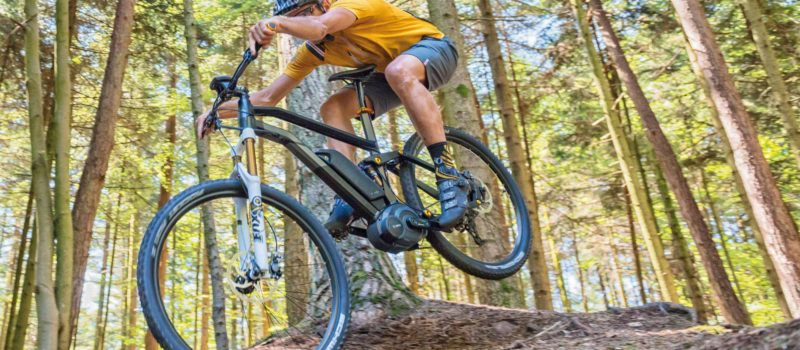 mammoth, e-bikes