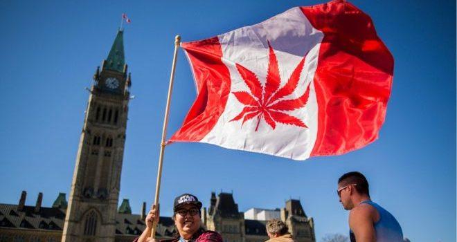 cannabis, canada, legalize, marijuana