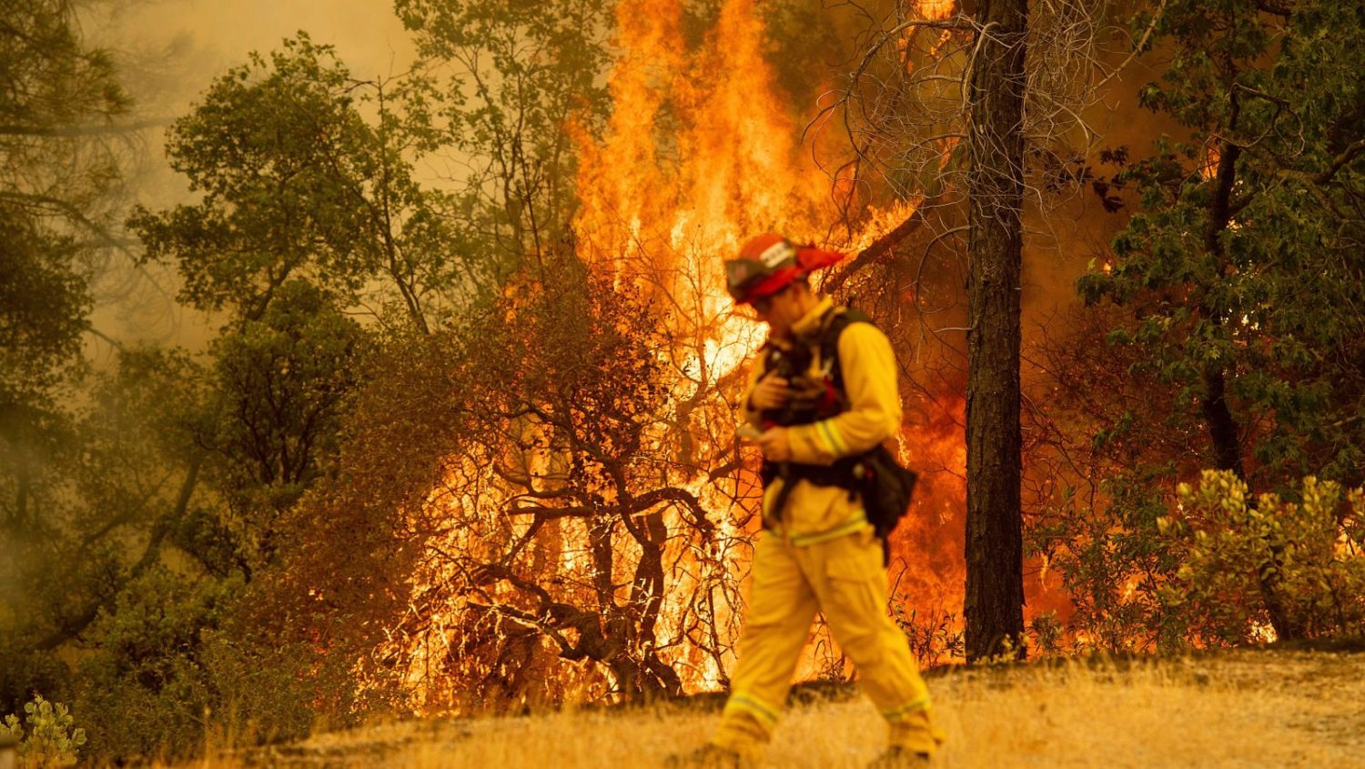 california, Carr fire, wildfire, wildfires,