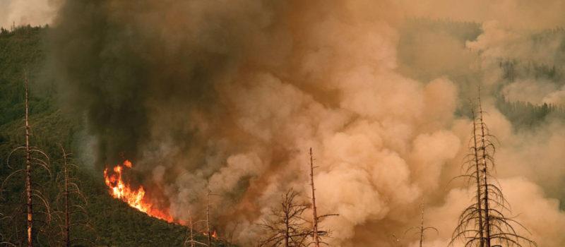 Carr fire, Ferguson fire, california