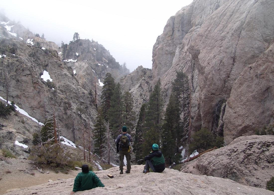 Williamson rock, climbing, frog, peregrine falcon, endangered, socal