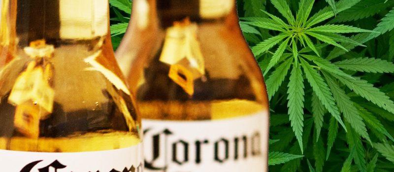 corona, marijuana, weed, beer
