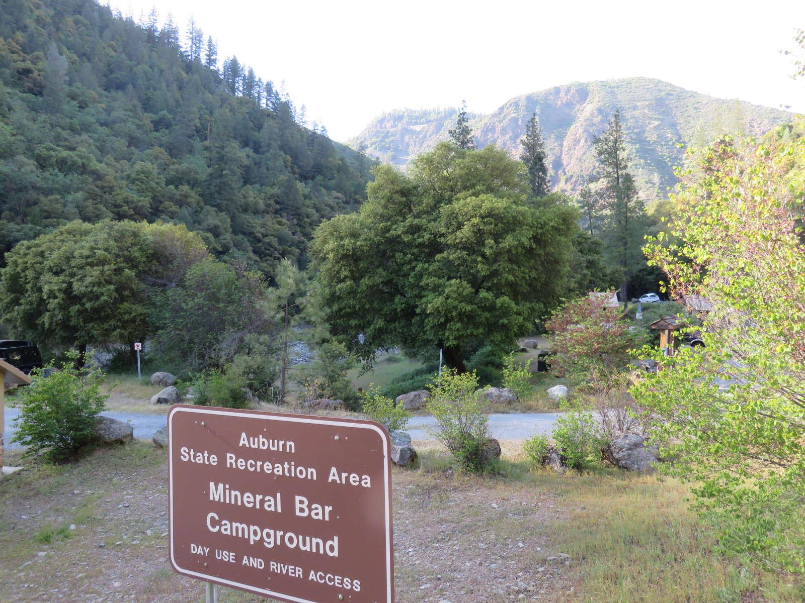 rabid bat, california, auburn state recreation park