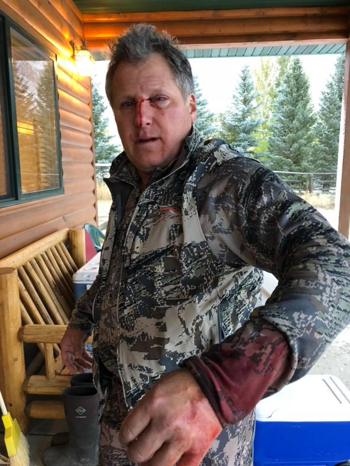 bow hunters, elk, grizzly, attack, bear attack, montana