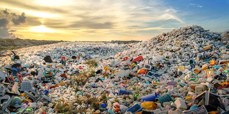 Effects of plastic on the environment