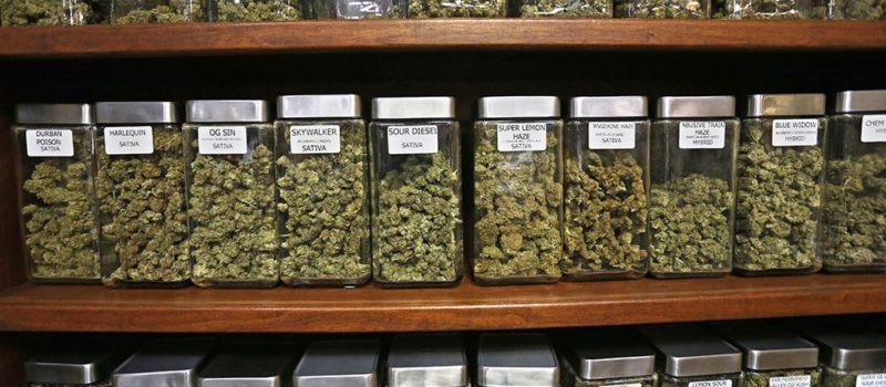 marijuana. record sales, colorado