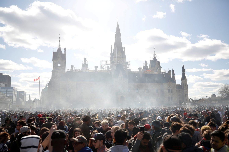 canada, marijuana, pot, weed, grass, green, legalize