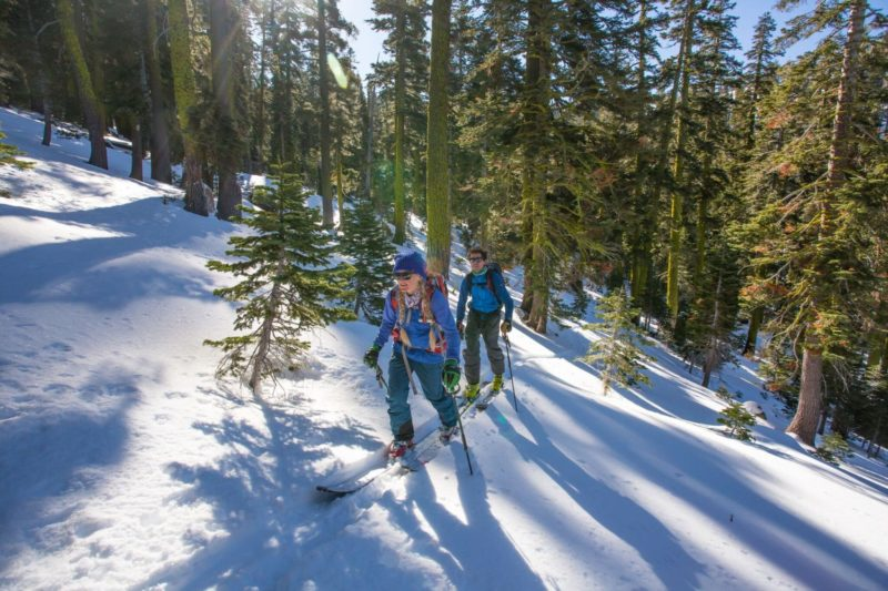 Alpenglow Expeditions, touring