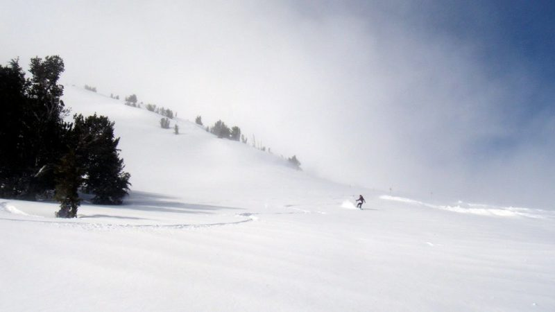 Mammoth March Powder Day
