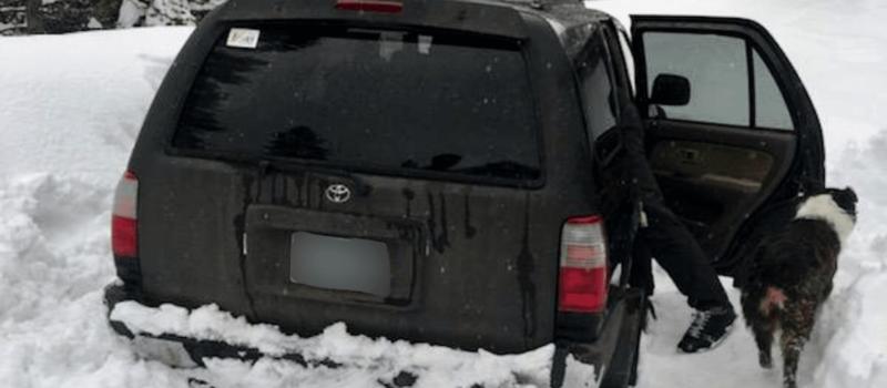 stranded, car, Oregon, Taco Bell