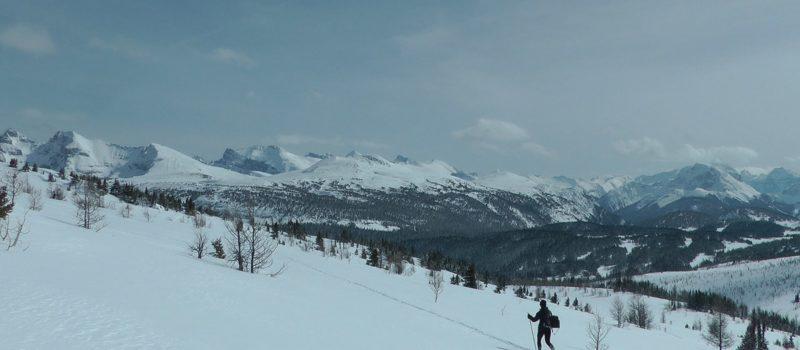 avalanche, Banff, canada, skier killed, Egypt Lake,
