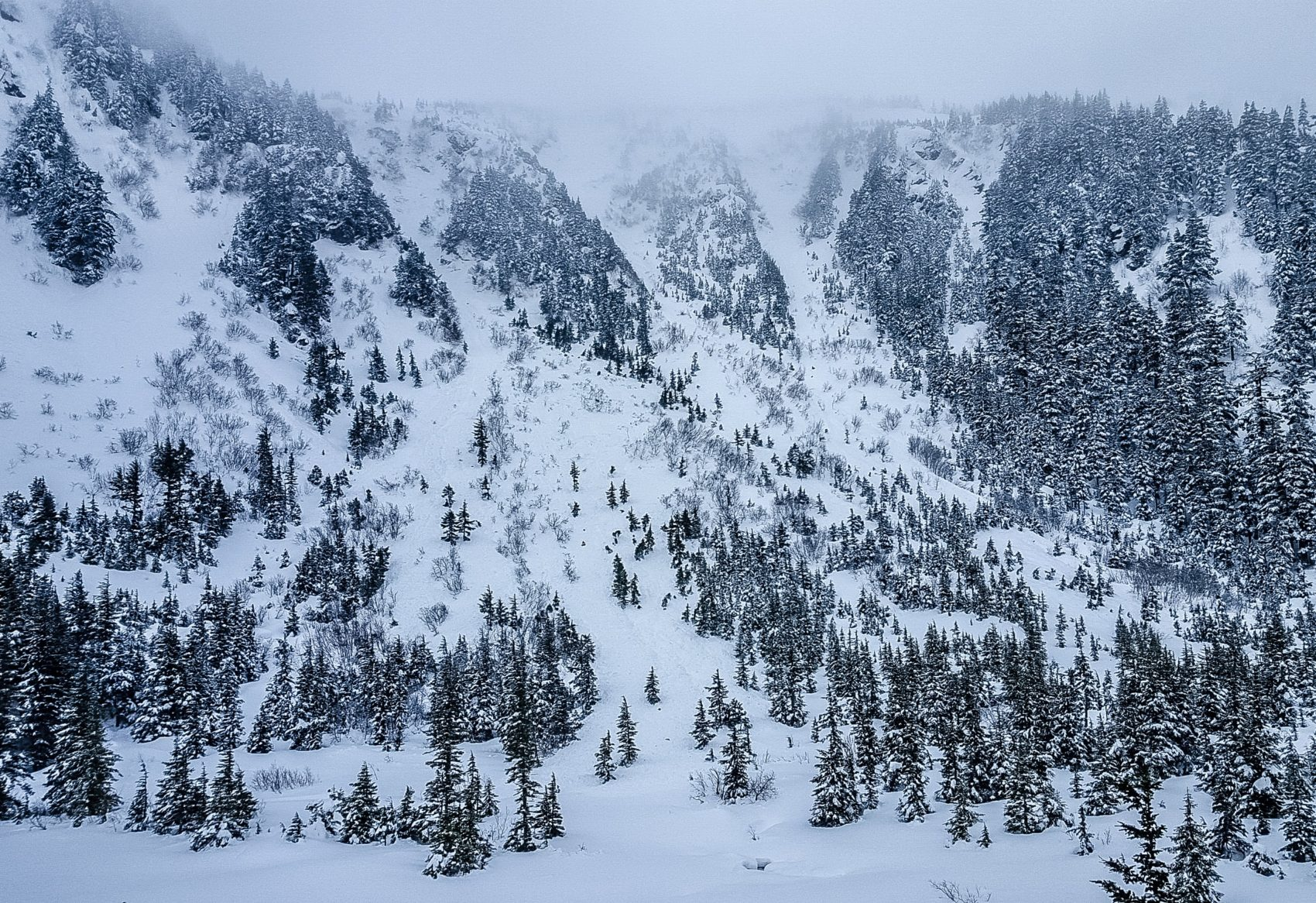 alaska, avalanche