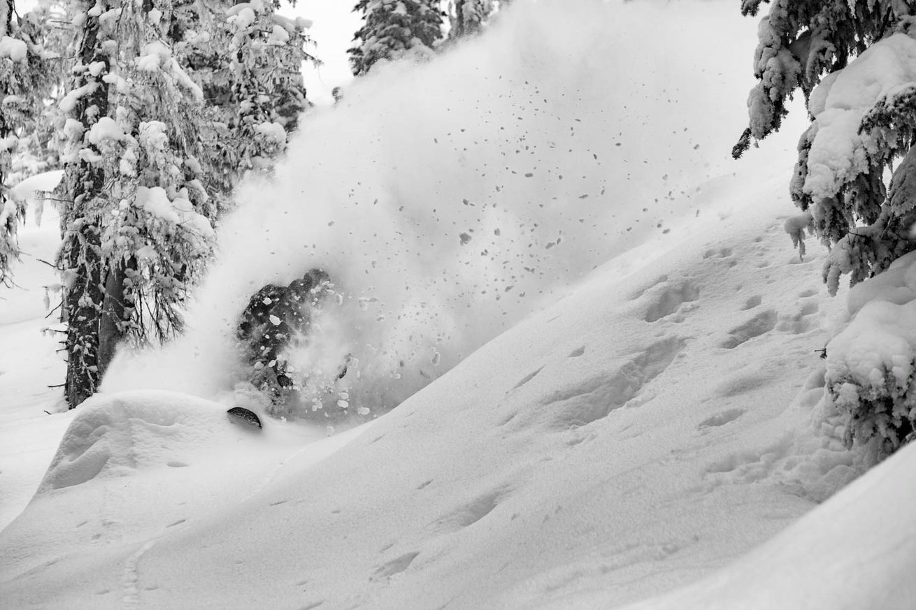 pow slashing in the trees
