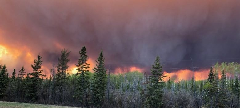 alberta, wildfire, canada, high level, state emergency, evacuation