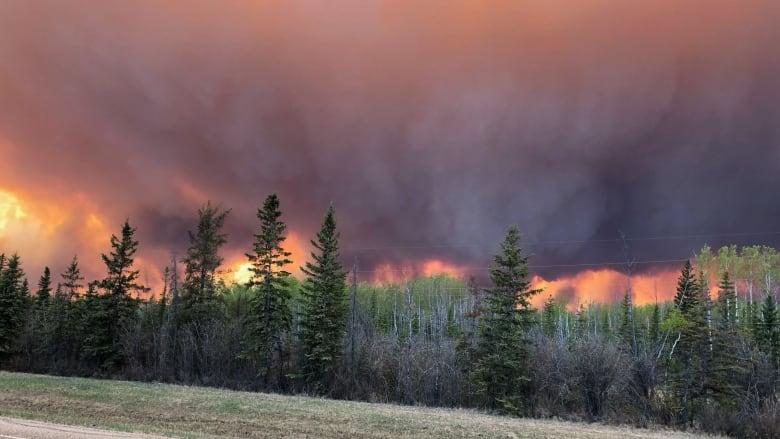 alberta, wildfire, canada, high level, state emergency, evacuation