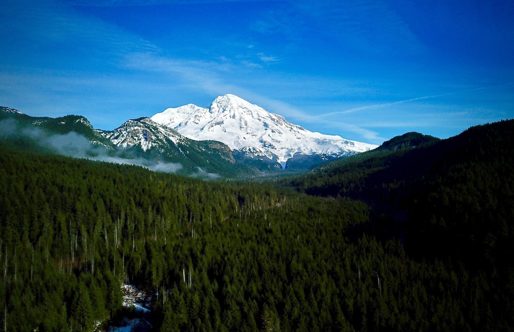 mount rainier, rainier, Washington