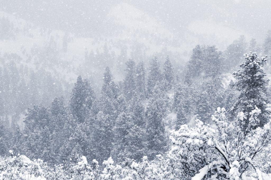 snow, colorado, June, summer