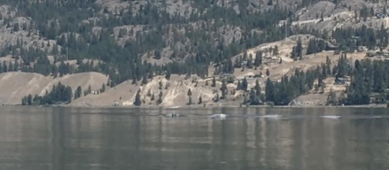 ogopogo, monster, canada, British Columbia, lake