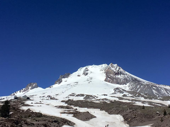mt hood timberline